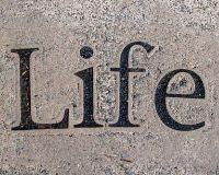 В чем суть жизни