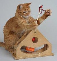 Как сделать кошку игрушку